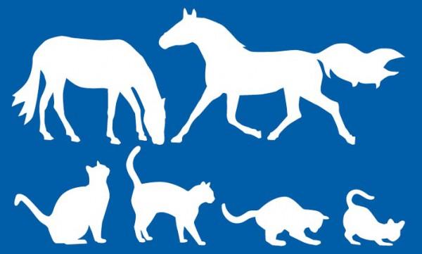 Schablone Pferd, Pferde - Schablone Katze, Katzen - Wandschablone